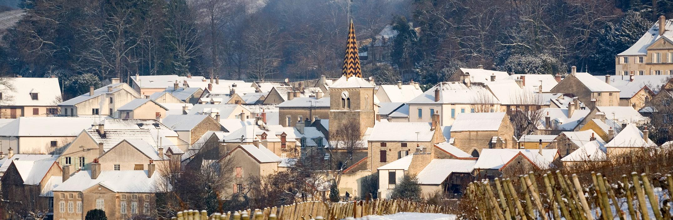 Domaine Dubreuil-Fontaine, Pernand Vergelesses, Bourgogne, Armelle photographe